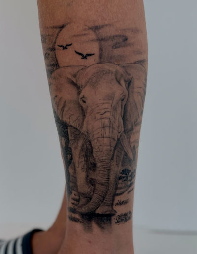 Freehand background behind my moms elephant?